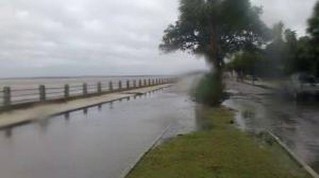 Hurricanetrack.com Mark Sudduth Charleston Battery Surge Cam (Matthew)